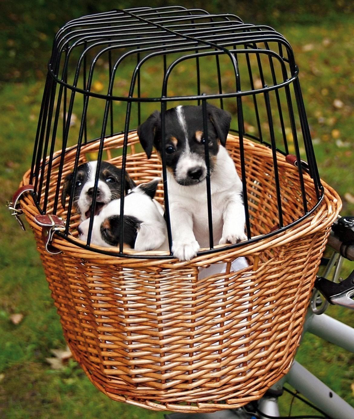 Fahrradkorb mit Gitter TRIXIE 44x48x33cm Bild 2