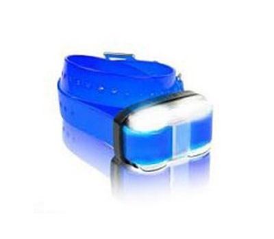 Dogtra Zusatzempfänger für 4500 Edge blau Bild 1
