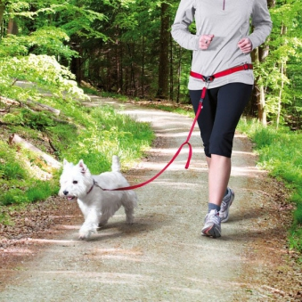 Leine mit Bauchgurt TRIXIE kleine und mittelgroße Hunde rot Bild 2
