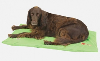 Hundebett / Hundekissen Doggy Duvet Bench X-Treme Gr. L Apple Green Bild 1