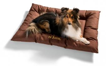 Hundekissen / Hundedecke Gent antibakteriell Gr. M 80x60cm braun Bild 3