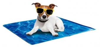 Kühlende Hundedecke / Kühlmatte Chill Out mittel 50x40cm Bild 1