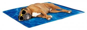 Kühlende Hundedecke / Kühlmatte Chill Out mittel 90x60cm Bild 1