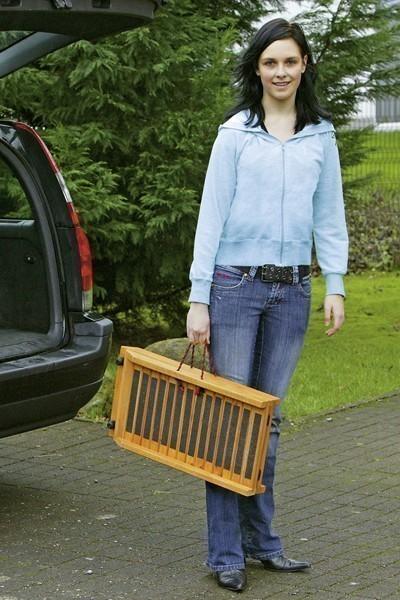 Einstiegshilfe / Hunderampe Car-Gangway 120 cm Karlie Bild 2