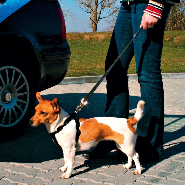 Ersatz-Kurzführer für Sicherheitsgurt TRIXIE Dog Protect Bild 2