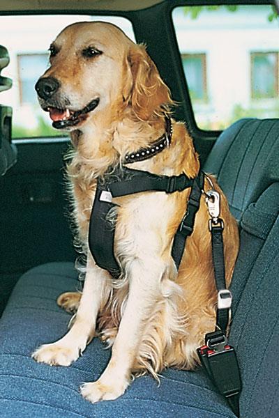 Sicherheitsgurte für Hunde TRIXIE Größe L Bild 1