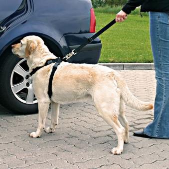 Sicherheitsgurte für Hunde TRIXIE Größe L Bild 2