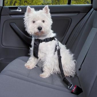 Sicherheitsgurte für Hunde TRIXIE Größe XS Bild 1
