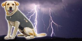 Thundershirt grau Gr. XL 78 - 101 cm Bild 2