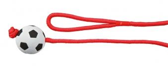 Hundespielzeug TRIXIE Ball am Seil L 1m / Ball-Ø 6cm Bild 1