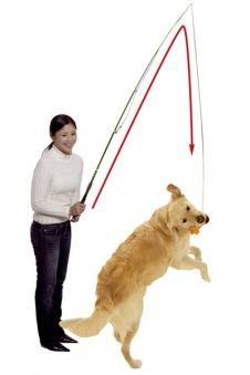 Reizangel / Spielangel Dog Dangler Gr. 49-165 cm Karlie Bild 1