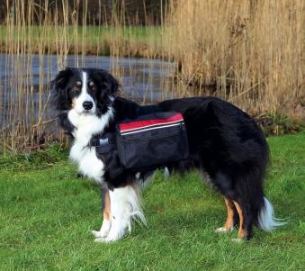 Rucksack für Hunde TRIXIE Größe M Bild 1