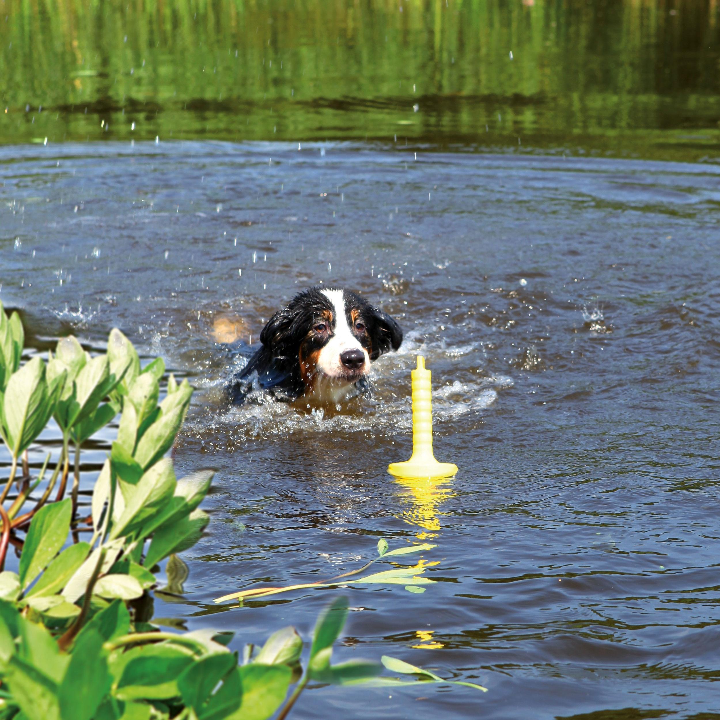 MOT® Aqua Lind-art Prof. Eckard Lind schwimmend 29 cm Bild 3