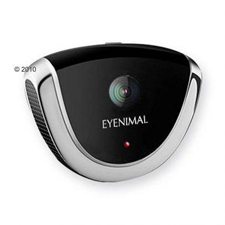 petcam videokamera eyenimal berwachungskamera f r tiere. Black Bedroom Furniture Sets. Home Design Ideas